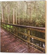 Highlands Hammock Wood Print