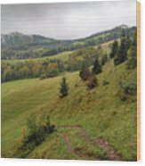 Highlands Landscape In Pieniny Wood Print