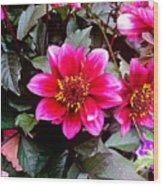 Highlands Ranch Floral Study 1 Wood Print