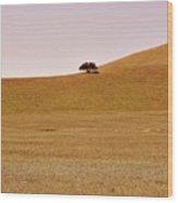 Highway 25 Wood Print