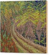 Highway 70 East Circa 1905 Wood Print