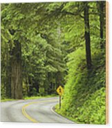 Highway Curve Wood Print