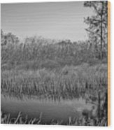 Highwaymens' Muse Wood Print