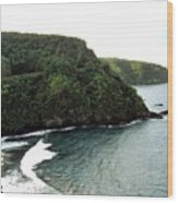Highway To Hana Wood Print