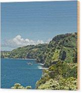 Highway To Heaven Hana Highway Maui Hawaii Wood Print