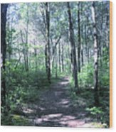 Hike In The Park Wood Print