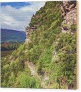 Hike Up Mt Iron Wanaka New Zealand Wood Print