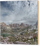 Hiker At Twin Lakes - Chicago Basin - Weminuche Wilderness - Colorado Wood Print