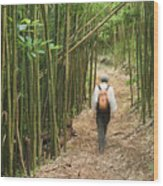 Hiker In Bamboo Forest Wood Print