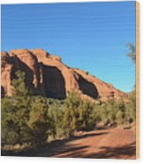Hiking In Red Rocks In Arizona Wood Print