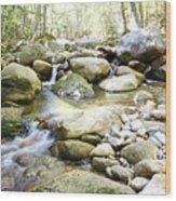Hiking Near The Trail Wood Print