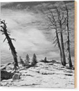 Hiking The Rim, Yosemite Wood Print