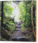 Hiking Wood Print