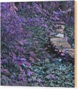 Hiking Trail Infrared Wood Print