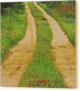 Hill Country Backroad Wood Print