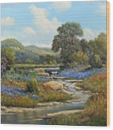 Hill Country Draw Wood Print
