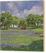 Hill Country Farming Wood Print