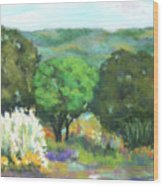 Hill Country II Wood Print