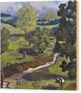 Hill Country Pasture Wood Print