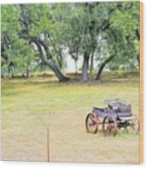 hill country Texas  Wood Print