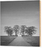 Hill Of Elm Wood Print