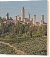 Hill Town Of San Gimignano Wood Print