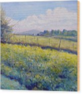 Hills Around Gavignano Italy 2005  Wood Print