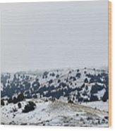 Hills In Fog Wood Print