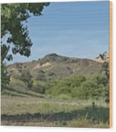 Hills In Peters Canyon Wood Print