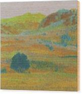 Hills Of Dakota Dream Wood Print