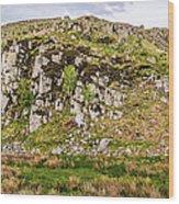 Hills Of Hadrians Wall England Wood Print