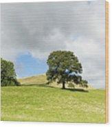 Hills Of Sedbergh Cumbria Wood Print