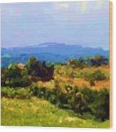 Hills Tuscany Wood Print