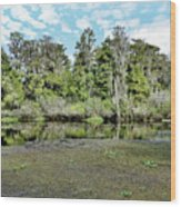 Hillsborough River 1 Wood Print
