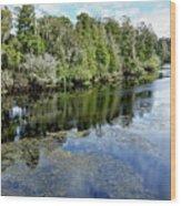 Hillsborough River 7 Wood Print