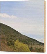 Hillside 1 Wood Print