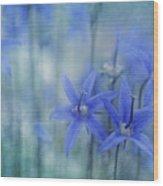 Hillside Blues Wood Print by Priska Wettstein