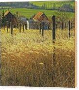 Hillside In Fall Jalaksova, Slovakia Wood Print