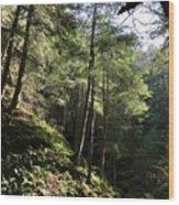 Hillside Landscape Wood Print