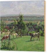 Hillside Of Vesinet Wood Print