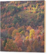 Hillside Rhythm Of Autumn Wood Print