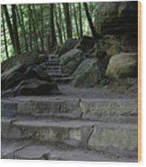 Hillside Trail Wood Print
