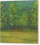 The Lakeside  Wood Print