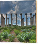 Hilltop Pillars Wood Print by Kevin Hill
