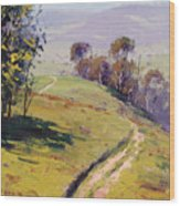 Hilly Landscape Lithgow Wood Print