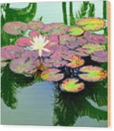 Hilo Water Lily 5 Wood Print