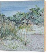 Hilton Head Beach Fauna Wood Print