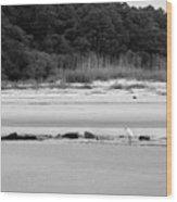 Hilton Head Island Shoreline In Black And White Wood Print