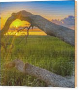 Hilton Head Island Sunrise Wood Print