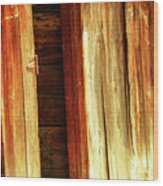 Hinge Wood Print